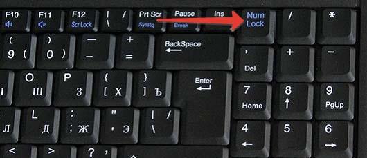 Включение цифровой клавиатуры ноутбука