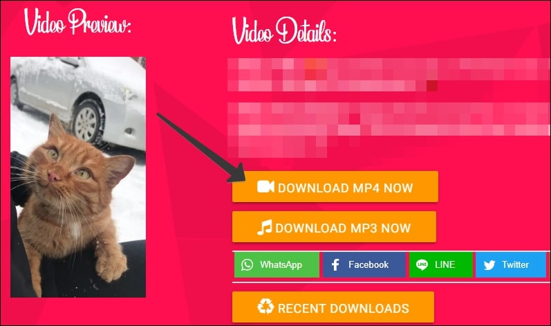 Download MP4 Now