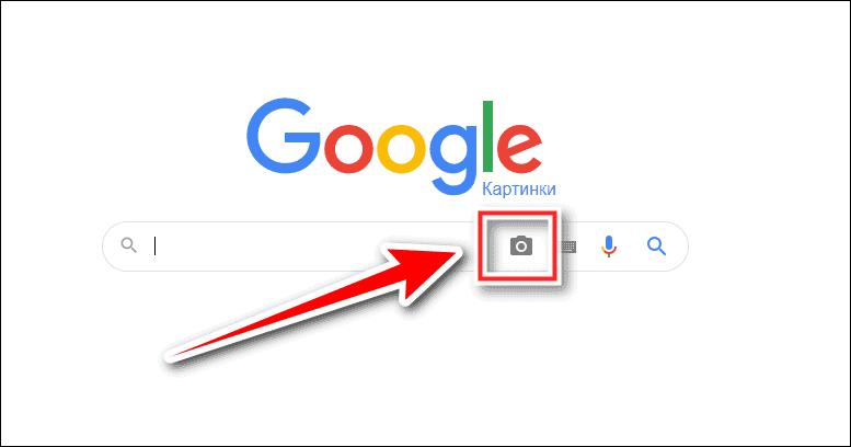 иконка камеры
